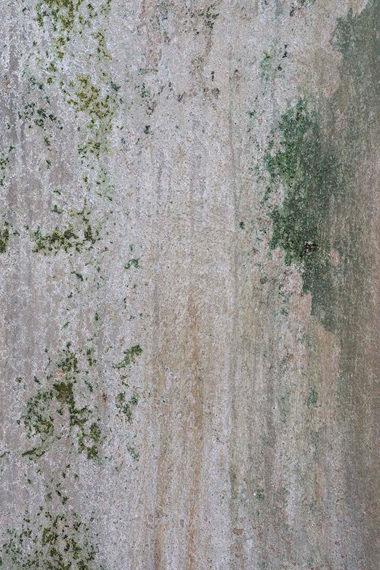 """"""" Mur de mousse """", Manufacture Digoin"""